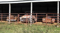 Corralled In: 1957 Chevy 3100 And Friends - http://barnfinds.com/corralled-in-1957-chevy-3100-and-friends/