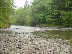 bear creek county park (N of Mill City)