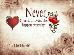 NEVER give up!!!! NEVER