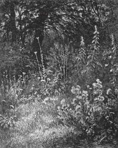 Forest flowers, 1873 Ivan Shishkin