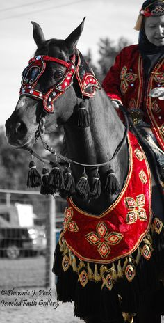 Red Desert Beauty by JeweledFaith on DeviantArt