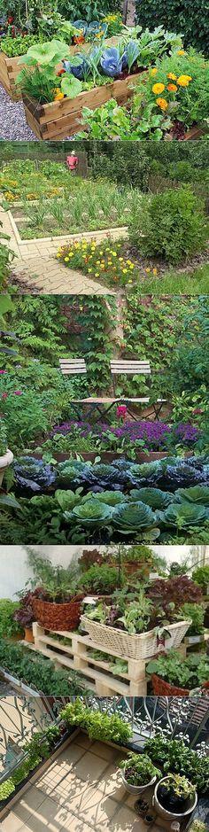 Декоративный огород: как сделать красивые грядки на участке | Наш уютный дом