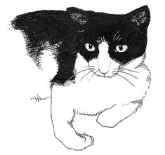 Cat Illustration Black/White Pen and Ink Art Print