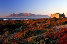Dawn at Robben Island, Cape Town - Table Mountain as backdrop over Table Bay - South Africa. Cape Town Holidays, Africa Destinations, Le Cap, Cape Town South Africa, Table Mountain, Island Tour, All Nature, Day Tours, The Guardian