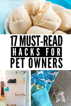Pet owner? Check out these pet hacks - perfect for dogs and cats! Recipes for frozen treats, cleaning tips for long haired pets, how to eliminate bad odors, and more! Diy Stuffed Animals, Frozen Treats, Four Legged, Cleaning Hacks, Dog Cat, Pet Tips, Pets, Recipes, Check