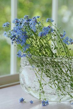 I love forget-me-nots Old, but gold