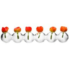 Chive - Hudson Caterpillar, Glass Flower Vase Chive http://www.amazon.com/dp/B00ECC9PQC/ref=cm_sw_r_pi_dp_0Kc1tb0JKC0RNJ58