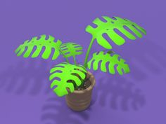 Swiss cheese plant - Monstera - Mockup by Moqop 3d Templates, Swiss Cheese Plant, Buy Images, Flower Pots, Flowers, Online Marketplace, Mockup, Garden, Nature
