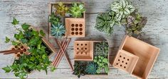 The wooden Eco Pot is a planter that carves out a corner to hold your pens and pencils, while the remaining space can be your own little desktop garden.