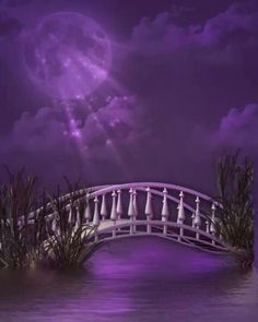 The Perfect World. Welcome O/ - Wedding Colors Purple Love, Purple Lilac, All Things Purple, Shades Of Purple, Deep Purple, Purple And Black, Purple Stuff, Purple Art, Color Lila