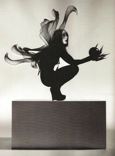 Nick Knight - studio photography, black and white tone and silhouette style, centre focus.