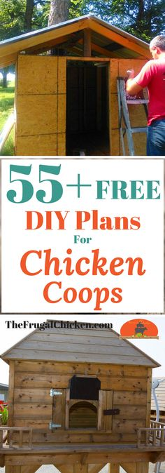 Here's 55+ totally free and cheap easy DIY chicken coop plans, ideas, tips, and designs to help you design your chicken run and shed!
