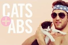 """Presenting: """"Cats + Abs"""""""
