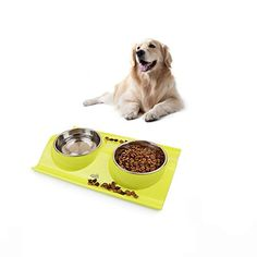 Double Dog Cat Bowls Stainless Steel Nonslip No Spill Pet Food Water Feeder green -- Want to know more, click on the image. (This is an affiliate link)