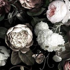 ellie cashman dark floral wallpaper - Google Search