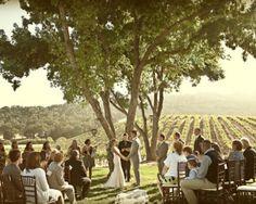 Have a Barn or Vineyard as Your Wedding Destination