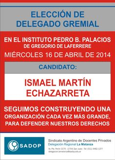 ELECCIÓN DE DELEGADO EN EL INSTITUTO PEDRO B. PALACIOS