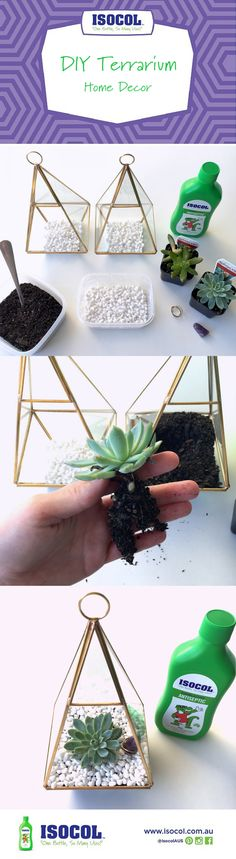 DIY Terrarium Home Decor with Gorgeous Gold Glass Prism Terrarium. Click for full instructions!