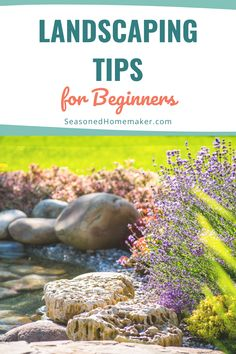 Most people never attempt a new garden landscape because they don't know where to start. In this popular pin I have 8 Gardening Landscape Tips for Beginners that will teach you How to Landscape. Vegetable Garden For Beginners, Gardening For Beginners, Gardening Tips, Vegetable Gardening, Creative Landscape, Landscape Design, Garden Design, Outdoor Landscaping, Backyard Landscaping