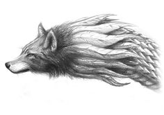 Lup Dacic / Dacian Wolf by ZenBenZen on DeviantArt Viking Tattoo Sleeve, Viking Tattoos, Wolf Tattoos, Tatoos, History Of Romania, Dragon Wolf, Crayon Drawings, Artist Pencils, Wolf Quotes
