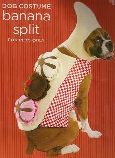 Banana Split Dog Halloween Pet Costume (Large Size 25-50 Lb) - http://www.thepuppy.org/banana-split-dog-halloween-pet-costume-large-size-25-50-lb/