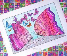 Szikrázó magenta árnyalatok #coloring #butterfly