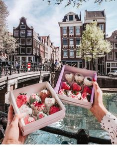 Discover the Best Restaurants in the city with my Amsterdam Food Guide. From the tastiest Asian Cuisine and Vegan Food Hotspots to the best Burgers & Pizza in town. Amsterdam Tulips, Amsterdam Food, Strawberry Cake Pops, Chocolate Covered Strawberries, Chocolate Flowers Bouquet, Food Bouquet, Sleepover Food, Food Carving, Pink Foods