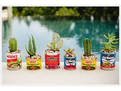 Plant mini succulents and cacti in empty Mexican food cans. Let these charming centerpieces double as party favors.