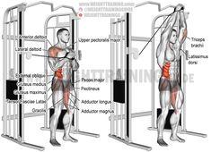 Cable vertical Pallof press. An isometric isolation and pull exercise. Target muscles: Internal and External Obliques. Stabilizers, core and legs: Iliocastalis Lumborum, Iliocastalis Thoracis, Quadratus Lumborum, Psoas Major, Hip Adductors, Pectineus, Gracilis, Gluteals, and Tensor Fasciae Latae. Stabilizers, near arm: Lateral and Anterior Deltoid, and Upper Pectoralis major. Stabilizers, far arm: Triceps Brachii, Latissimus Dorsi, and Teres Major.