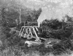 Steam locomotive 'Angelina' on tramline bridge over Nihotupu Stream, 1920, during construction of the Upper Nihotupu Dam. On the left is Davis' Clearing. Photo JTD-08C-03304-1