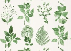 Designers Guild Jindai fabric For curtains or upholstery