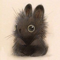 Bunny sketch Drawings Cute animals