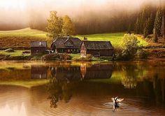Nikon 100th Anniversary: 100 anni di storie Il fotografo Bernhard Klestil ha sempre amato il paesaggio di Mariazell in Austria ma c'era un lago in particolare che avrebbe voluto immortalare all'alba. Dopo aver impostato la sveglia alle quattro del mattino e aver guidato tre ore sotto la pioggia quando arrivò al lago rimase spiacevolmente sorpreso dalla nebbia. Bernhard si fece comunque strada attorno al lago fino a che trovò un'anatra che dormiva. Aspettò altre due ore per immortalarne il…