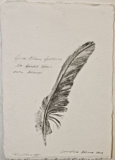 Drawing Feathers for a week - Feather 3