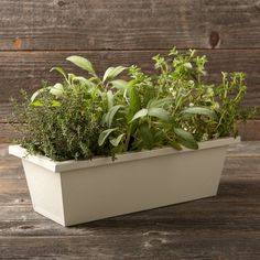Window Planter #williamssonoma; small, medium, large; $30-40; needs attachment tools