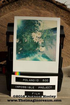 Polaroid Onestep Flash red stripe 8/19/2015 5:50pm Impossible Project 600 Film 600 Film, Impossible Project, Instant Camera, Cameras, Polaroid, Etsy Shop, Red, Camera, Polaroid Camera
