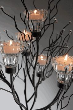 Candle Trees 43 Iron Holder 2 Candles