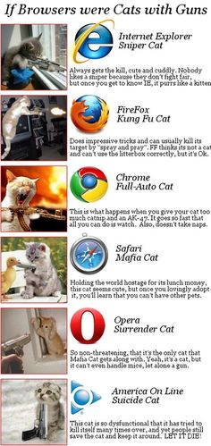 They forgot to add one thing to Internet Explorer Cat: It's specialty is making you adopt other cats :D