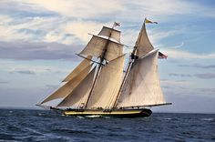 The PRIDE OF BALTIMORE II is a replica of the War of 1812 American privateer CHASSEUR.  She is the official tall ship of Maryland and sails the world as an ambassador and educational vessel.