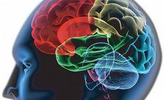 ¿Quieres saber cómo mejorar la concentracion con remedios naturales? Lee el siguiente artículo.