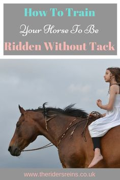 How To Train Your Horse To Be Ridden Without Tack Riding a horse with no tack shows a true bond between horse and ride. But how do normal equestrians ride without tack? Here is how you can train your horse to be ridden without tack. Horse Training Tips, Horse Tips, My Horse, Horse Riding, Riding Gear, Equestrian Outfits, Equestrian Style, Equestrian Problems, Equestrian Fashion