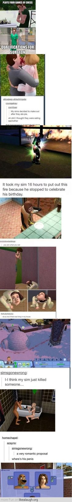 I love the sims. I've done the pie one. Its even more funny watching it.: