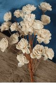 """Sola (tapioca wood) 1"""" Shell Flowers with Stems (20 flowers) $5.99/ 3 bouquets for $5 each"""
