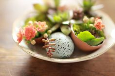 Eggshells planters: These are super cute!