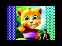 2015Ginger kitten eats cartoon for little Ginger kitten eats Cartoon Baby - http://showatchall.com/animal/2015ginger-kitten-eats-cartoon-for-little-ginger-kitten-eats-cartoon-baby/