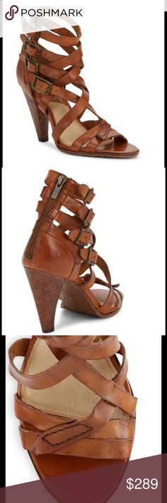 HP NIB Frye Mika Gladiator Open Toe Sandals These are absolutely stunning! Frye Shoes