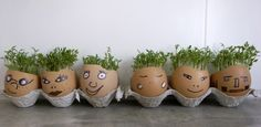 Reuse eggshells as seed starters. Plop them in the ground and as the eggshell breaks down it also adds calcium to your soil.