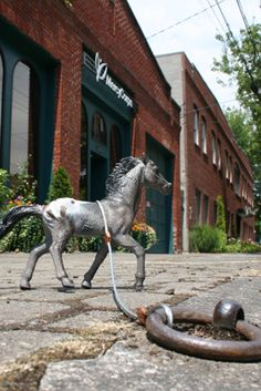 46 Best Portland Horse Project images in 2018   Brewery