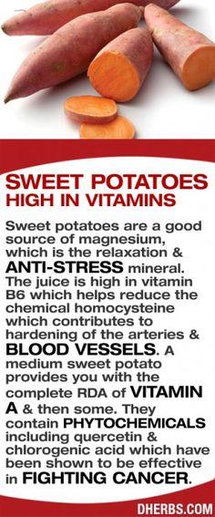 Sweet Potato Infographic and health benefits