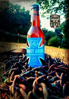 White Rabbit Ste Cru Au consulat de la Bière Beer Bottle, Rabbit, Drinks, Craft Beer Glasses, Bunny, Drinking, Rabbits, Beverages, Bunnies